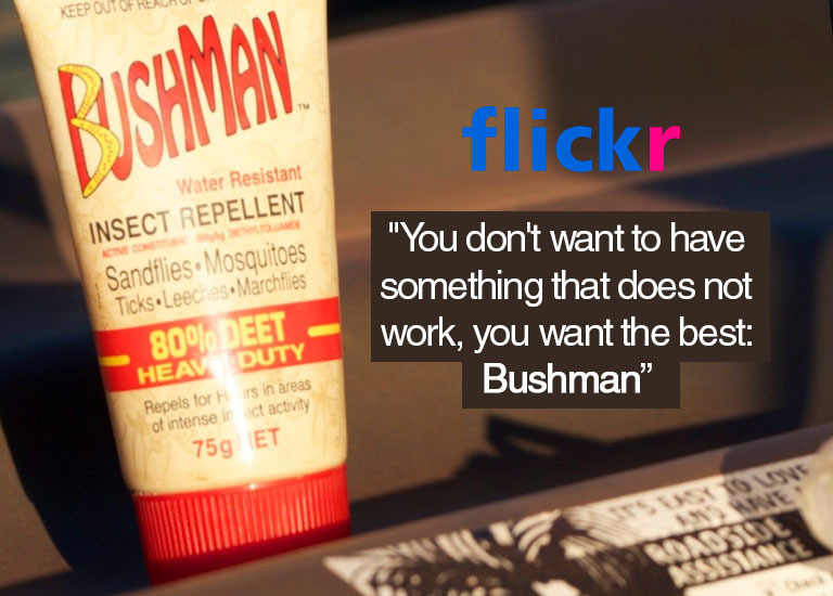 Flickr: You want the best: Bushman - review